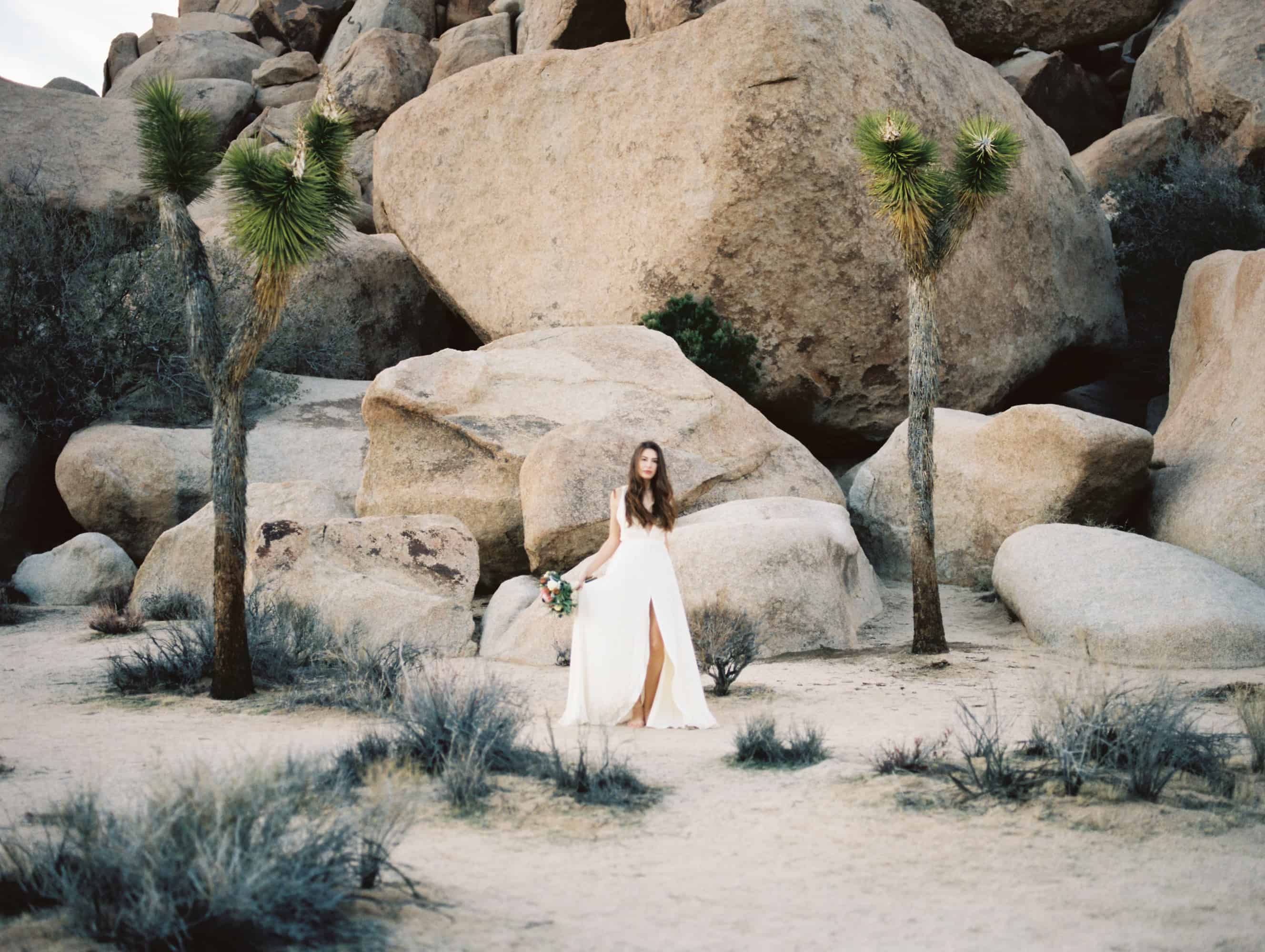 joshua tree park wedding