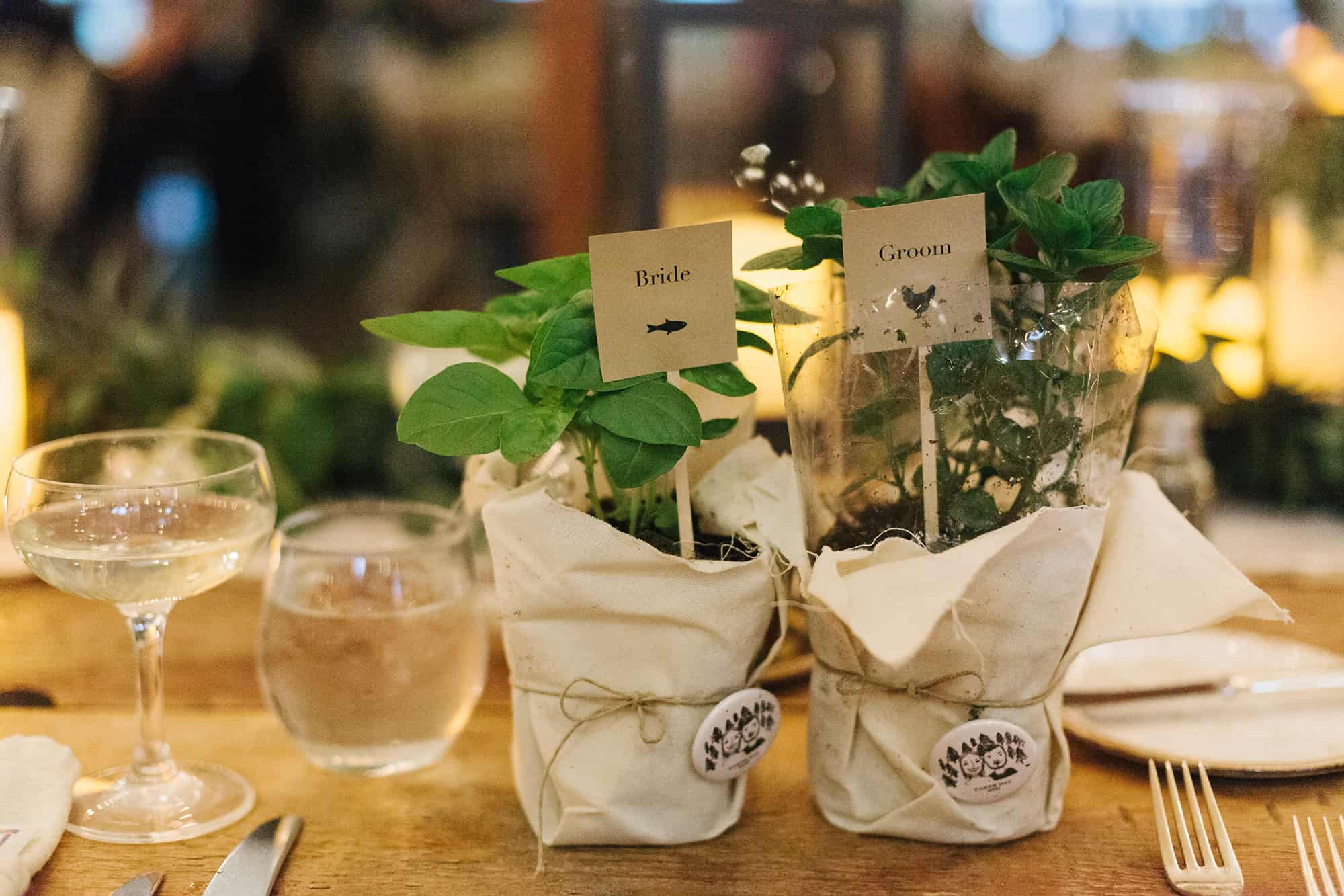 earth day wedding favors