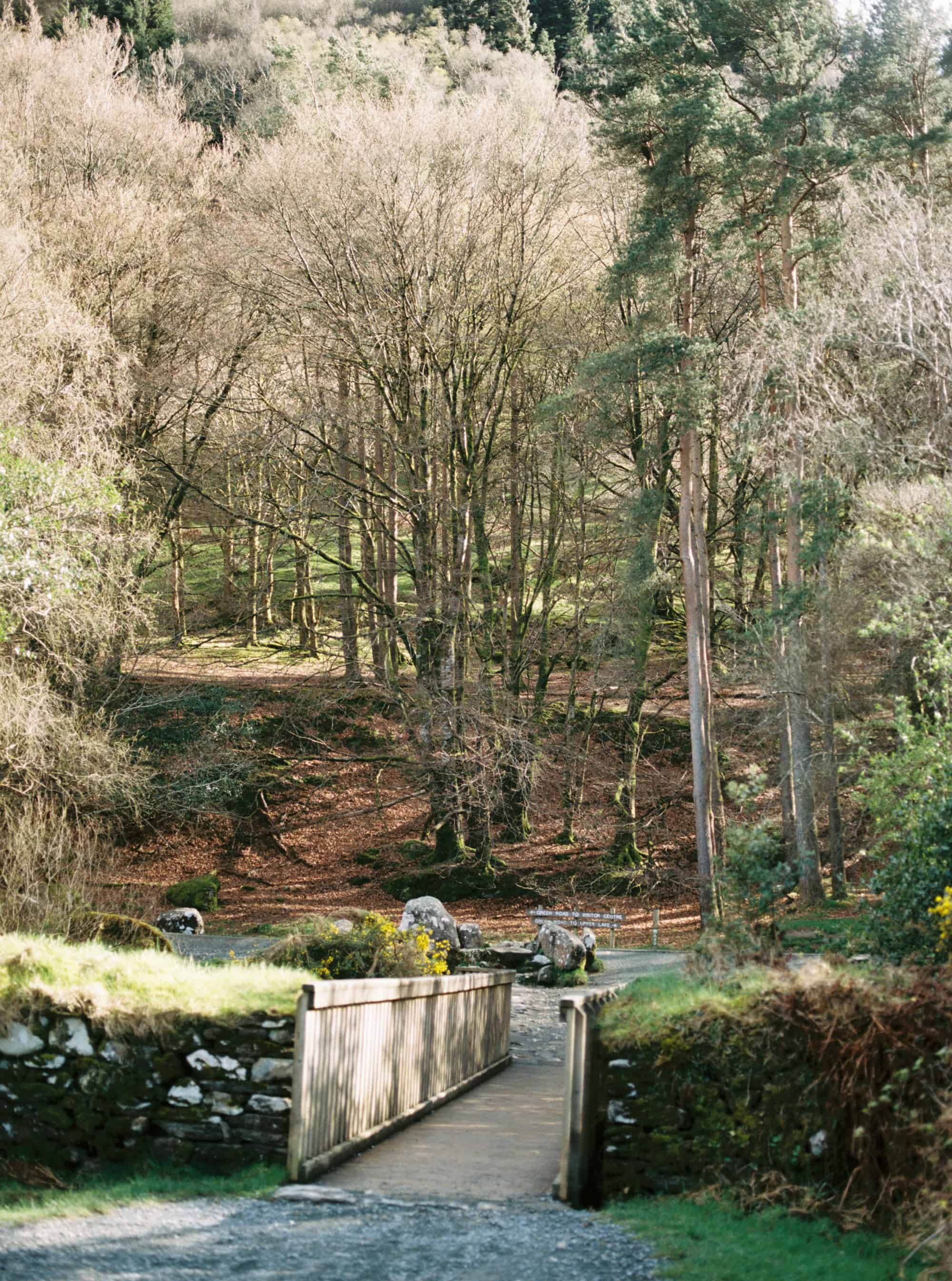 Glendalough Ireland photographed on film by Kate Lamb of Wild in Love Photo.